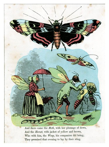 012-The Butterfly's ball 1860 -William Roscoe -University of Florida Digital Collections