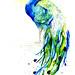 Peacock III by Amy Holliday