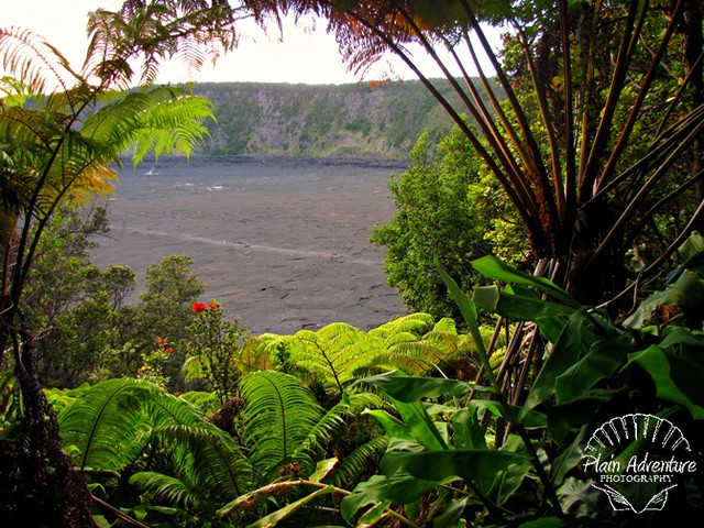 Kilauea Iki Trail – Hawaii Volcanoes National Park