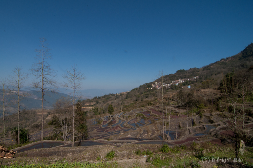 Yuanyang Rice Terrace and a village