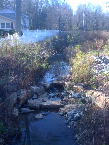 Muddy Creek: A restored urban stream and one of our field sites