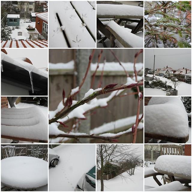 February 2012 snowfall