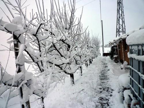Nevicata 2009 by meteomike