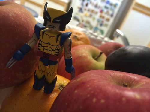 Xman Fuitcake Series – Wolverinetot #002