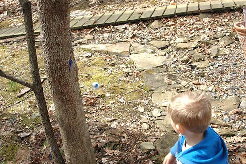 Tinkerlab Challenge: Egg Bombing Trees