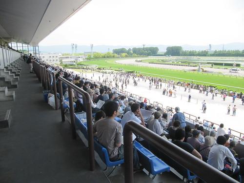 京都競馬場の2~3階座席