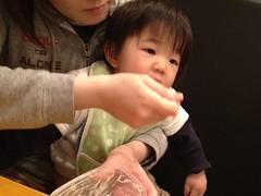 とらちゃん、レストランで昼御飯(2011/11/26)