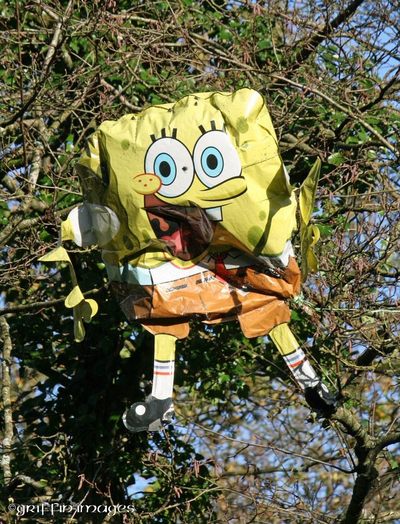 Spongebob visits Sorbrook.
