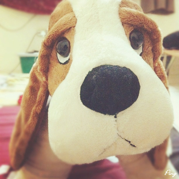 Hush Puppies Soft Toy