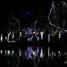 zoo_lights_20111119_21931