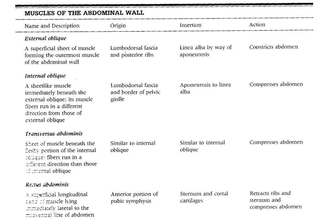 4. Abdominal OIA