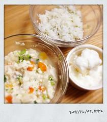 とらちゃんの今日の朝御飯(2011/12/9)