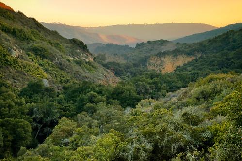 trees sunset orange green nature canon landscape outdoors december hiking scenic hills socal 5d southerncalifornia orangecounty oaks lagunabeach markii alisoviejo chaparral regionalpark woodscanyon alisocanyon
