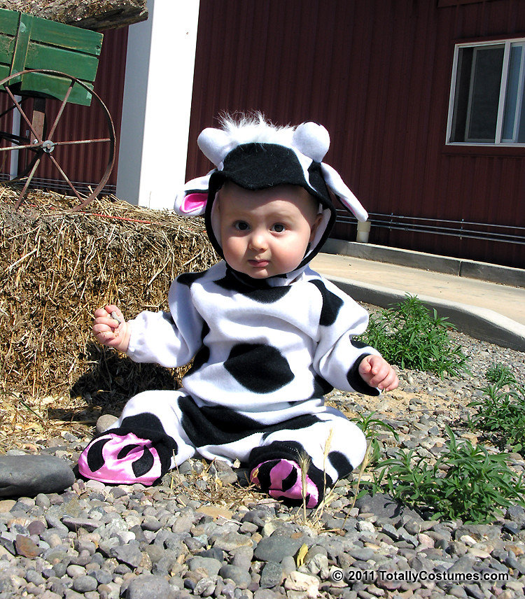 Baby Cow Costume  sc 1 st  Picssr & Flickr photos tagged babycowcostume | Picssr