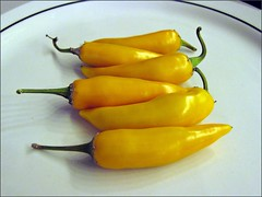 Bulgarian carrot peppers