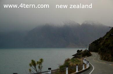 纽西兰打工度假-曾未参与任何打工度假