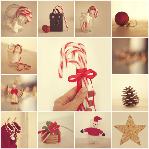 Merry Christmas by Vanina Vila {Photography}