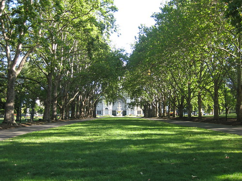 The Carlton Garden's Grand Allée - Melbourne