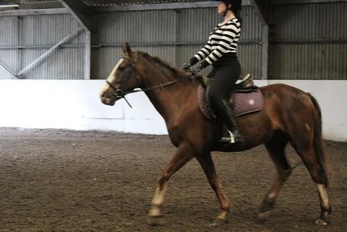 Riding - Sparky