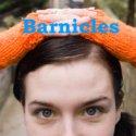 Barnicles Blog