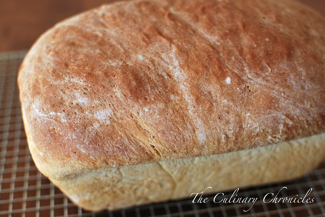 Bread Illustrated America S Test Kitchen Pita Errata