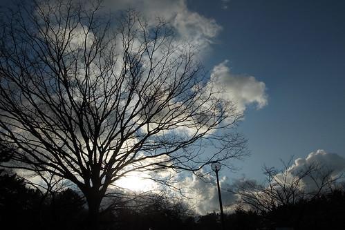 青き空よ!