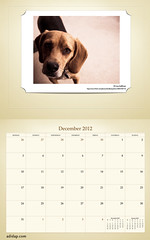ADIDAP Calendar 2012 UK Retro December