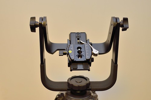 Manfrotto 393 Gimble with RSS Clamp D7K_3700