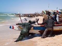 Fish market in Nouakchott