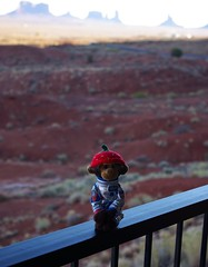 mini monkey at monument valley