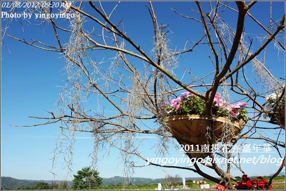 2011南投花卉嘉年華20120108_I2335