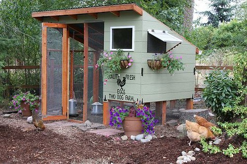 Chicken Coop via Homestead Revival