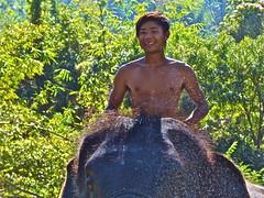 Thailand - January 2012