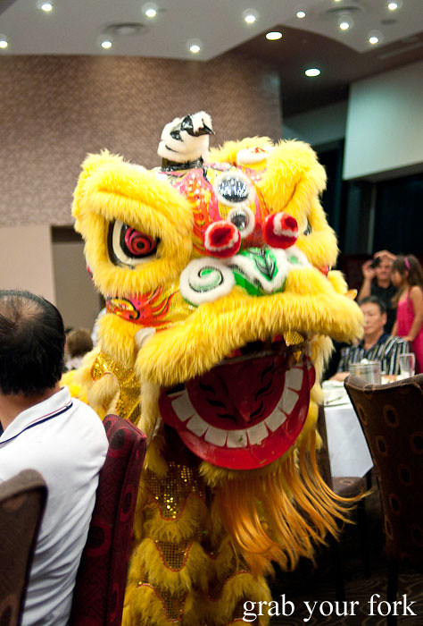 lion dance kam fook bondi junction