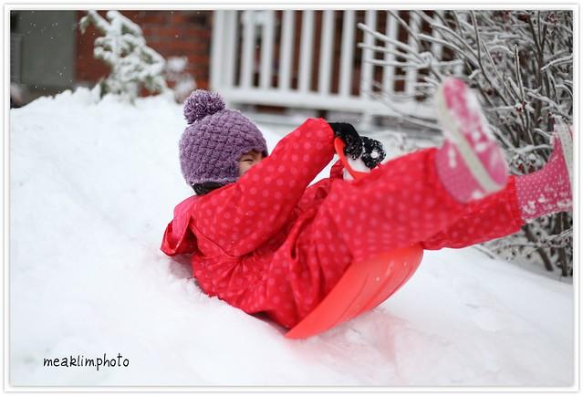 a new sleigh
