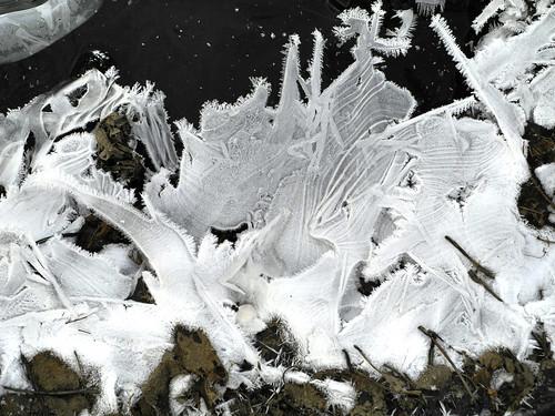 vinter_2