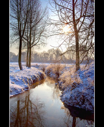 trees sun snow reflection water sunrise canon eos frost belgium belgie sigma 1020 hdr wallonie wallonia braine 60d lalleud ringexcellence