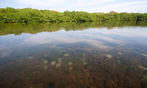 Islas del Rosario 09