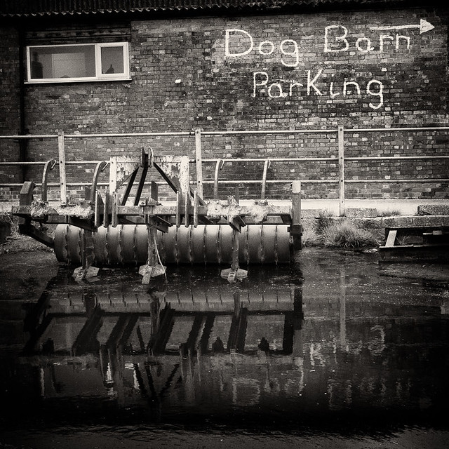 Dog Barn parking