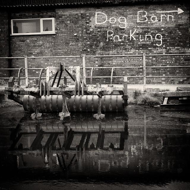 Dog Barn parking