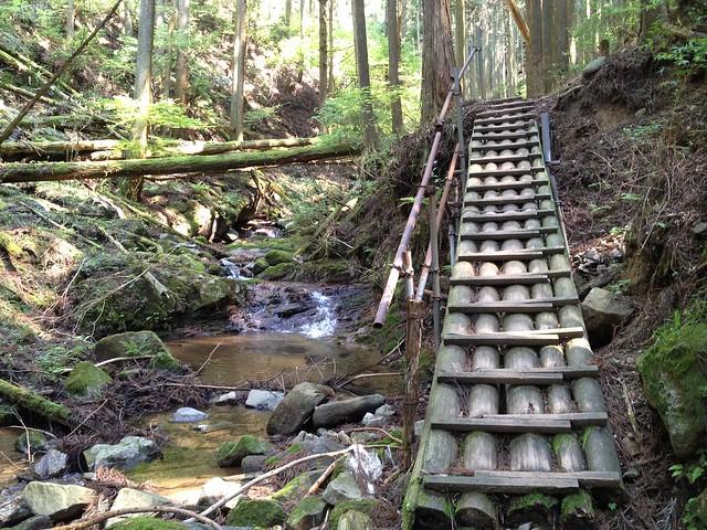 錫杖ヶ岳 加太コース 大丸太橋
