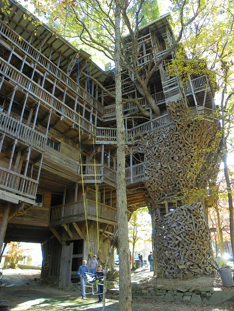 Side View of the World's Largest Treehouse
