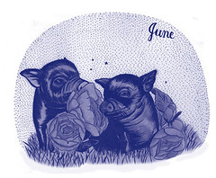 A second drawing from the calendar shows two piglets sitting down on a grassy patch surrounded by roses. The upper right corner of the calendar says June in cursive handwriting. There are lots of little pen-tip sized polka-dots covering the background of the image. This image is also a blend of purples and whites.