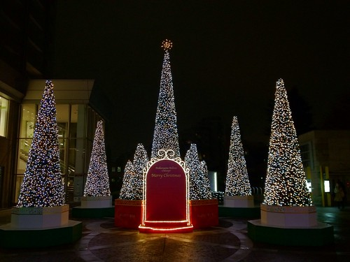代官山アドレスのクリスマスイルミネーション2011