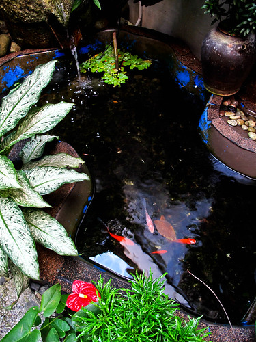 IMG_1625  Pond  -务边怀古楼 , Gopeng Museum