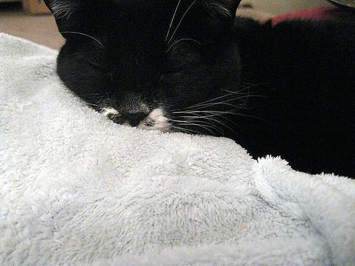 snooze_snozzle_ac
