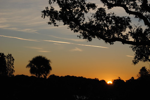Sunrise Central Florida!