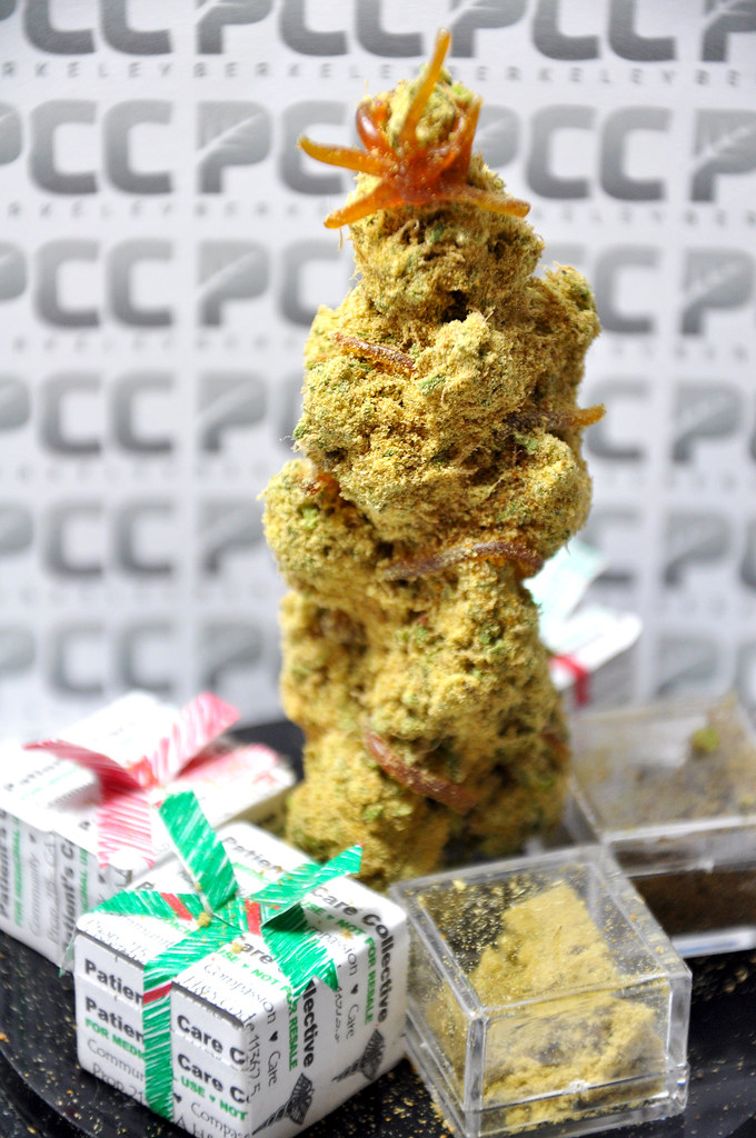 Berkeley Collective Offers Potent Marijuana 'Christmas Trees ...