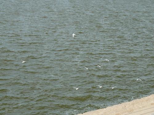 Qaron Lake 2 by ronen20042002