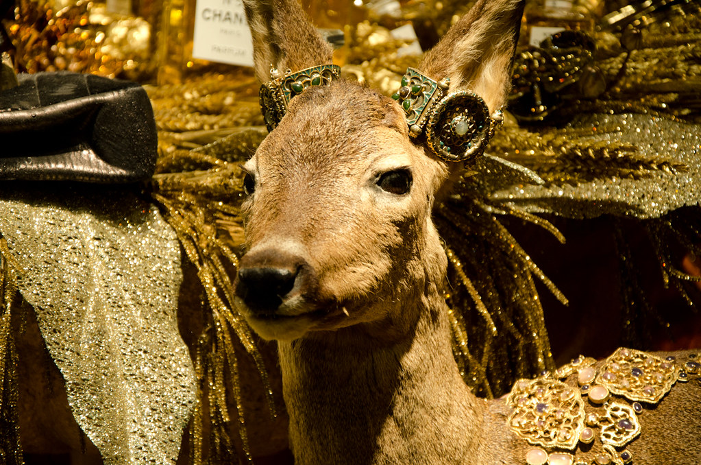 Vitrines de Noël au Printemps Haussmann